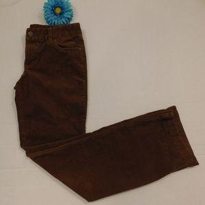 J Crew Brown Corduroy Pants